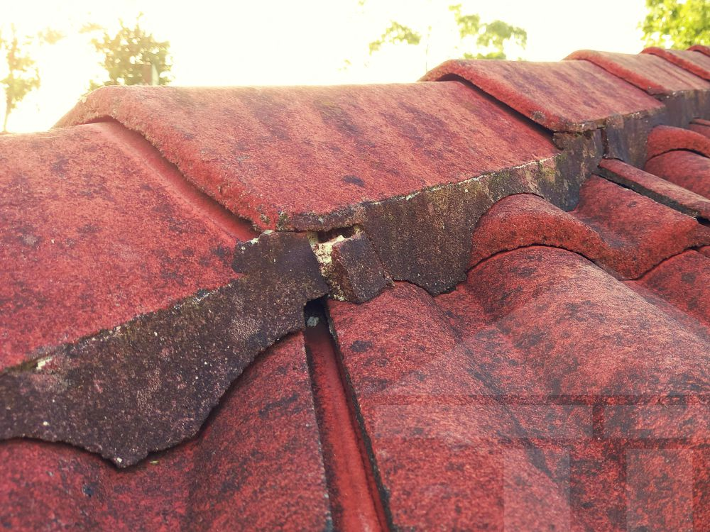 Central Coast Gutter Cleaning-Ridge Capping Repointing Bedding Mortar Splitting
